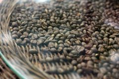 Coffee bean table Royalty Free Stock Photography