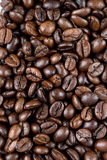 Coffee bean texture Royalty Free Stock Image