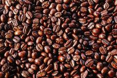 Coffee bean. A Coffee bean texture upper view royalty free stock image