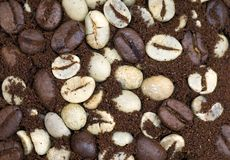 Coffee bean textures. Three stages of the coffee bean Texture royalty free stock photography