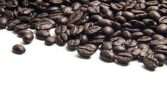 Coffee bean on top center of picture white background . copy space Royalty Free Stock Photography