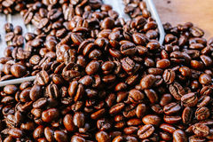 Coffee bean on tray. Coffee bean texture on try royalty free stock photo