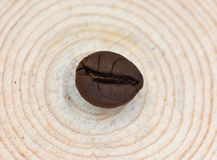 A Coffee Bean is on the Tree Stool. A Natural Coffee Bean is on the Tree Stool Royalty Free Stock Photos