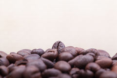Coffee Bean. With white background Royalty Free Stock Photography