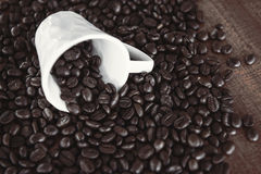 Coffee bean with a white cup Royalty Free Stock Photography