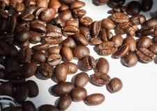 Coffee bean. Coffee bean on white paper Royalty Free Stock Photos