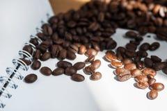 Coffee bean. Coffee bean on white paper Stock Photo
