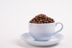 Coffee bean Royalty Free Stock Image