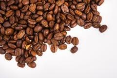 Coffee bean Stock Photography