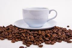 Coffee bean Stock Photos