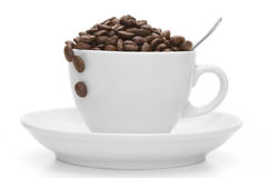 Coffee bean in a white porcelain cup. On the white background Stock Photos