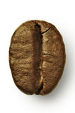 The coffee bean Royalty Free Stock Image