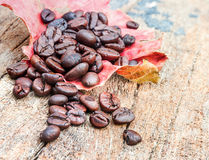 The coffee bean on wood texture. Stock Photos