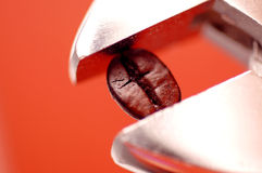 Coffee Bean In Wrench Stock Image