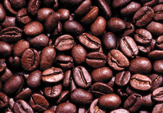 Coffee beans. Background with many coffee beans Stock Photography