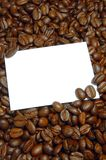 Coffee beans. Blank and empty shit paper between coffee beans Royalty Free Stock Images