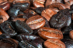 Coffee beans. Roasted brown and black coffee beans Stock Photography