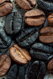 Coffee beans. Black and brown roasted coffee beans Stock Images
