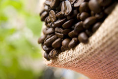 Coffee Beans. Burlap bag filled with coffee beans Stock Photo