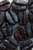 Coffee beans. Close-up: Black roasted coffee beans Royalty Free Stock Photo