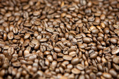 Coffee beans. A lot of cofee / Espresso beans Royalty Free Stock Photo