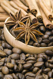 Coffee beans. Cinnamon and anise Royalty Free Stock Photo