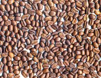 Coffee beans. Packed in a single layer isolated on a white background Royalty Free Stock Photos