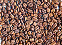 Coffee beans. Packed in a single layer isolated on a white background Royalty Free Stock Images