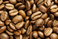 Coffee Beans. A macro picture of whole coffee beans Stock Image