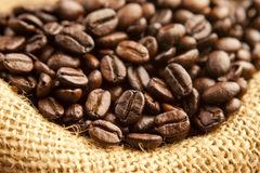 Coffee beans Royalty Free Stock Image