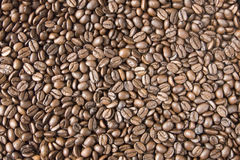 Coffee beans. The background made of coffee beans Stock Photos
