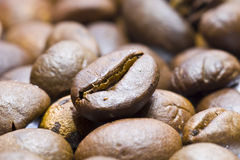 Coffee beans. Shot in studio stock photos