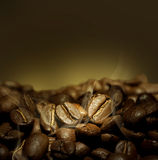Coffee Beans. Beautiful Roasted Coffee.Selective focus stock images