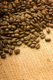 Coffee beans. Roasted coffee beans selected on rustic cloth bag Stock Photography