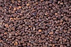 Coffee beans. Closeup, dark roasted Stock Image
