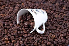 Coffee beans. Closeup with cup Royalty Free Stock Photography