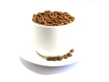 Coffee beans. Are in a cup isolated on a white background Stock Photography