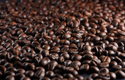 Coffee beans. A lot of roasted brown coffee beans stock photos