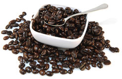 Coffee Beans. Natural french roast coffee beans in bowl with spoon on white background Royalty Free Stock Images