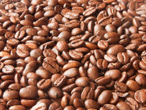 Coffee beans. The background made of coffee beans Royalty Free Stock Images