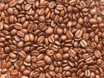 Coffee beans. The background made of coffee beans Stock Photography