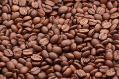 Coffee beans. Image of roasted dark brown coffee beans Stock Photo