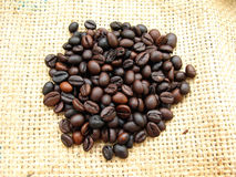 Coffee Beans. Pile of roasted coffee beans isolated on jute background Stock Photography