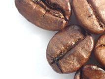 Coffee beans. Macro shot of aromatic freshly roasted coffee beans royalty free stock photos