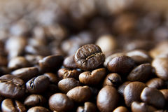 Coffee beans. A bed of delicious and fragrant coffee beans stock photography
