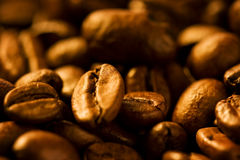 Free Coffee Beans Stock Images - 16251924