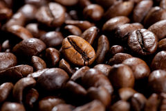Coffee Beans. Close up view of coffee beans Royalty Free Stock Photography