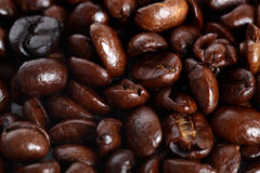 Coffee Beans. Dark Roasted Coffee Beans in a Pile Stock Images
