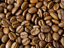 Coffee Beans. Background using colombian coffee beans on a plate royalty free stock photo