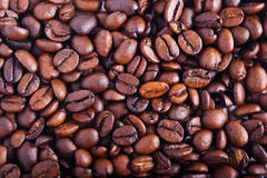 Free Coffee Beans Stock Photo - 17128650
